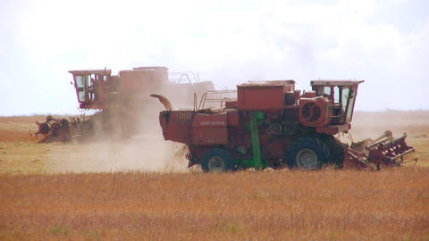 Two combines Stock Video Footage