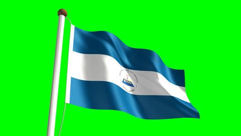 Nicaragua flag Stock Video Footage