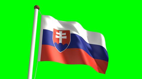 Slovakia flag Stock Video Footage