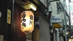 Japanese Lantern Stock Video Footage