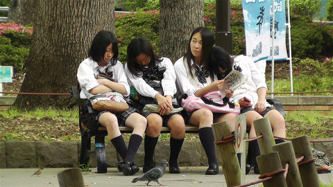 Japanese Schoolgirls Relaxing in Park in Yokohama Japan 11 Stock Video Footage