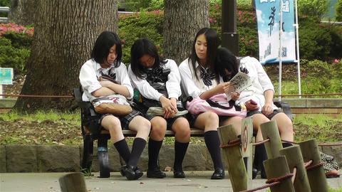 Japanese Schoolgirls Relaxing in Park in Yokohama Japan 11 Stock Video Footage