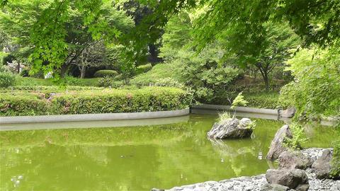 Park in Yokohama Japan 2 Stock Video Footage