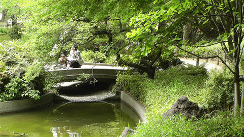 Park in Yokohama Japan 4 Footage