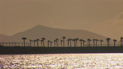 palm island at sunset Stock Video Footage