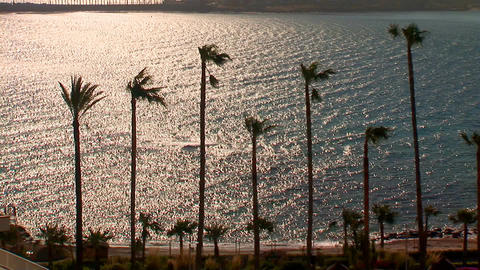 sea sunset palms Stock Video Footage
