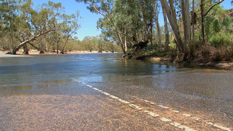 Four wheel drive driving to water, Australia Stock Video Footage