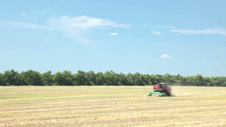 Grain harvests Stock Video Footage