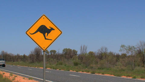 Gray jeep passing by Kangaroo sign Stock Video Footage