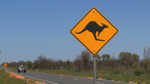 Gray jeep passing by Kangaroo sign Footage