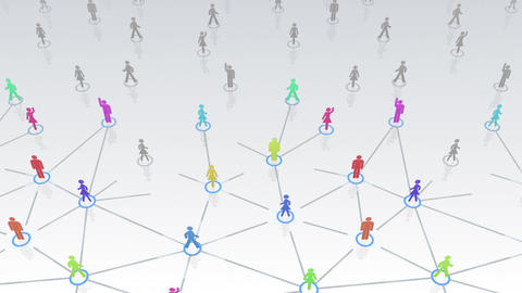 Social Network Connection A 3w 3 HD Animation