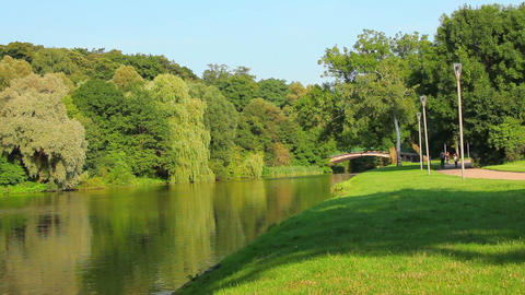 Green trees in park with lake and old bridge Stock Video Footage