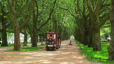 Green trees in park and small train Stock Video Footage