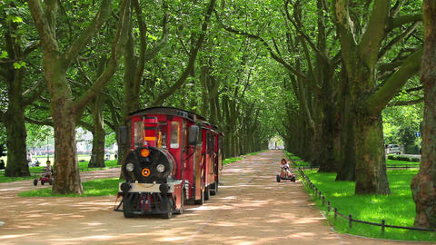 Green trees in park and small train Footage