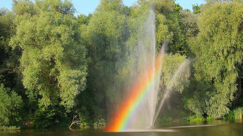 Green trees in park with fountain and rainbow Stock Video Footage
