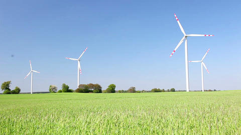 Natural Energy - Windmills And Green Grain Field stock footage
