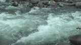 Big Turbulent creek flowing closeup Stock Video Footage