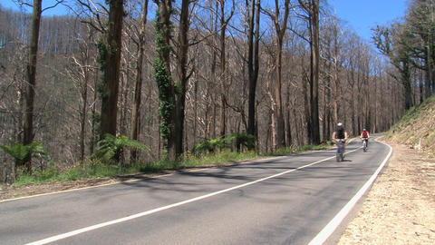 Cycling down hill between burned tree at the Dande Stock Video Footage