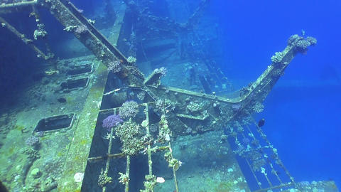 Shipwreck Salem Express in Red Sea Live Action