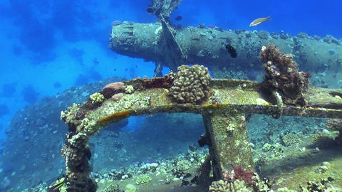 Shipwreck Salem Express in Red Sea Stock Video Footage