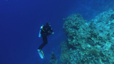 Diver swims over coral reefs Footage