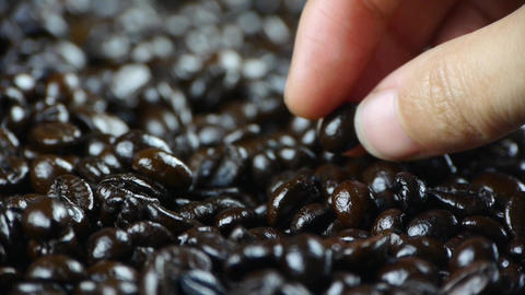 examining coffee beans Stock Video Footage