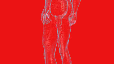 3D transparent grid human nude body Stock Video Footage