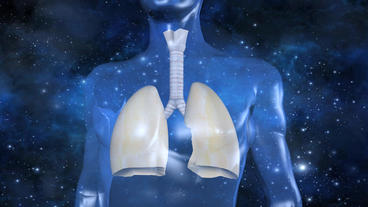 human body & breathing lungs with universe background Animation