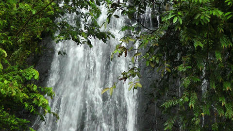 Waterfall in Rainforest Stock Video Footage