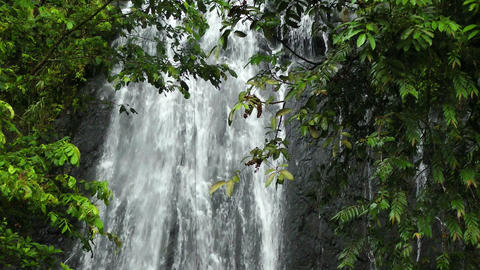 Waterfall in Rainforest Footage
