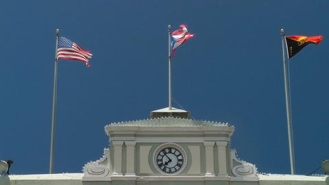 Flags fly atop government building Footage