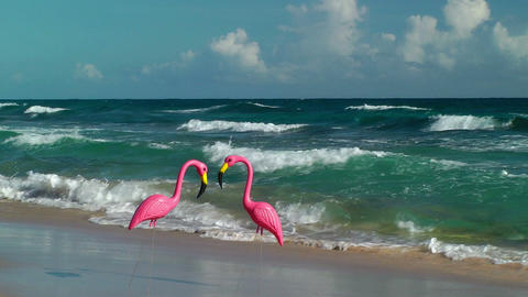 Two plastic flamingos on Isabel Beach Footage