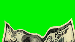 MELTING DOLLAR stock footage