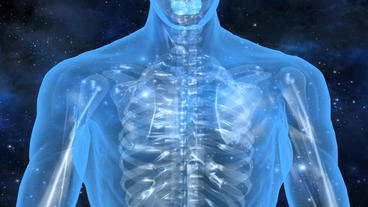 3D transparent human nude body & skeleton with universe background Animation