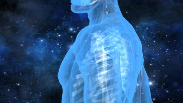 3D transparent human nude body & skeleton with... Stock Video Footage