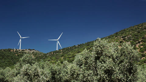 Olive trees and wind power Stock Video Footage