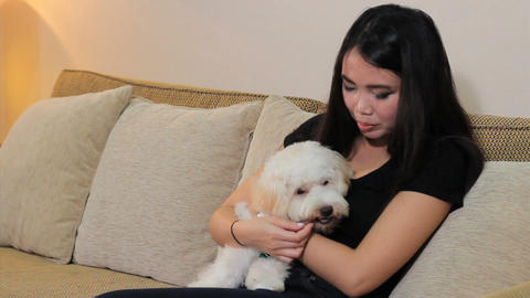 Pretty Asian Woman Gives Her Dog A Tasty Treat Stock Video Footage