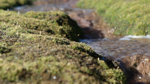 Pan of bubbling brook Footage
