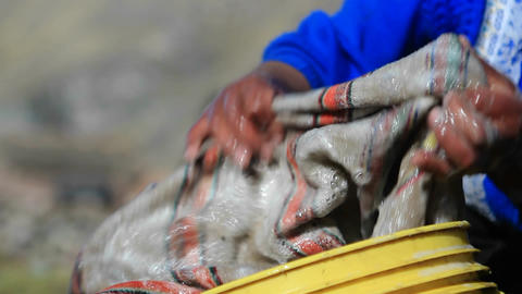 Close up of woman washing clothes Stock Video Footage