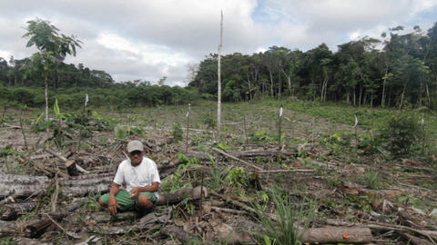 Peruvian man sitting in de-forested area Stock Video Footage