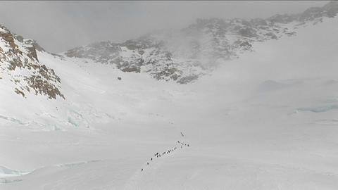 Lines of climbers making there way up Denali Footage