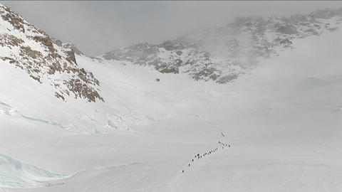 Lines of climbers making there way up Denali Stock Video Footage