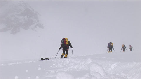 Snow falling on climbers as they struggle Footage
