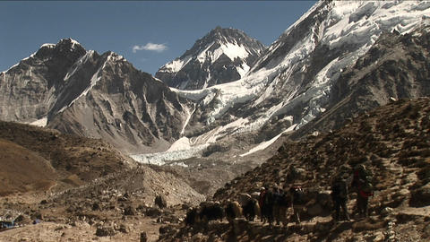 Yaks and porters heading out Stock Video Footage