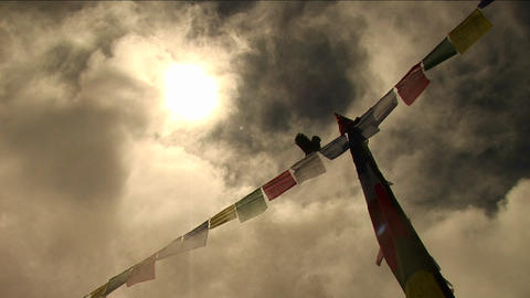 Bird standing atop prayer flags Footage