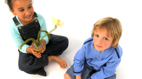 African american girl and blonde boy playing with flower,... Stock Video Footage