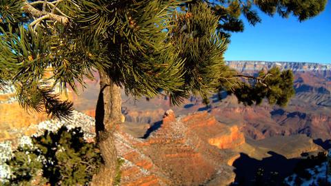 Panoramic views of Grand Canyon,Arizona Stock Video Footage