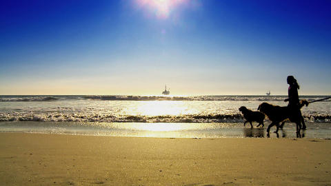 Oil platform at sea with people walking dogs in silhouette Stock Video Footage