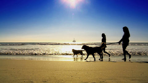 Oil platform at sea with people walking dogs in silhouette Footage