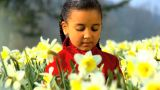 Girl Smelling Flower Slowly stock footage